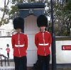 : Summer : Guards Museum,Wellington Barracks, Birdcage Walk, SW1E 6HQ
